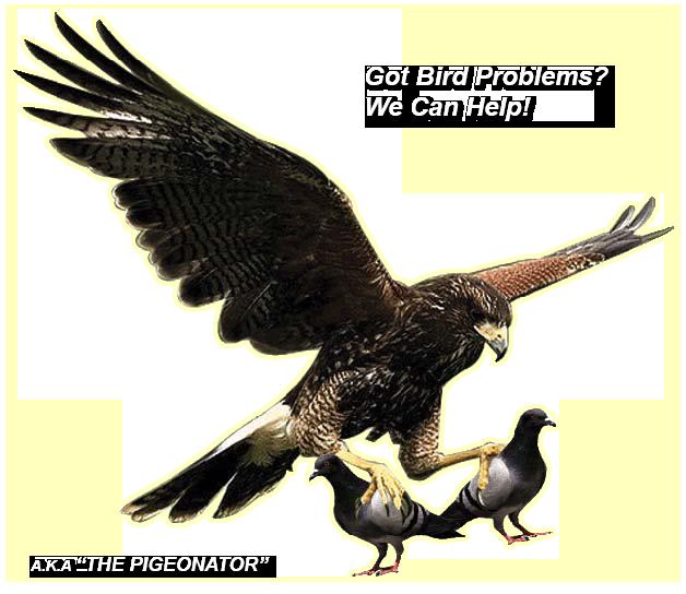 pigeonator